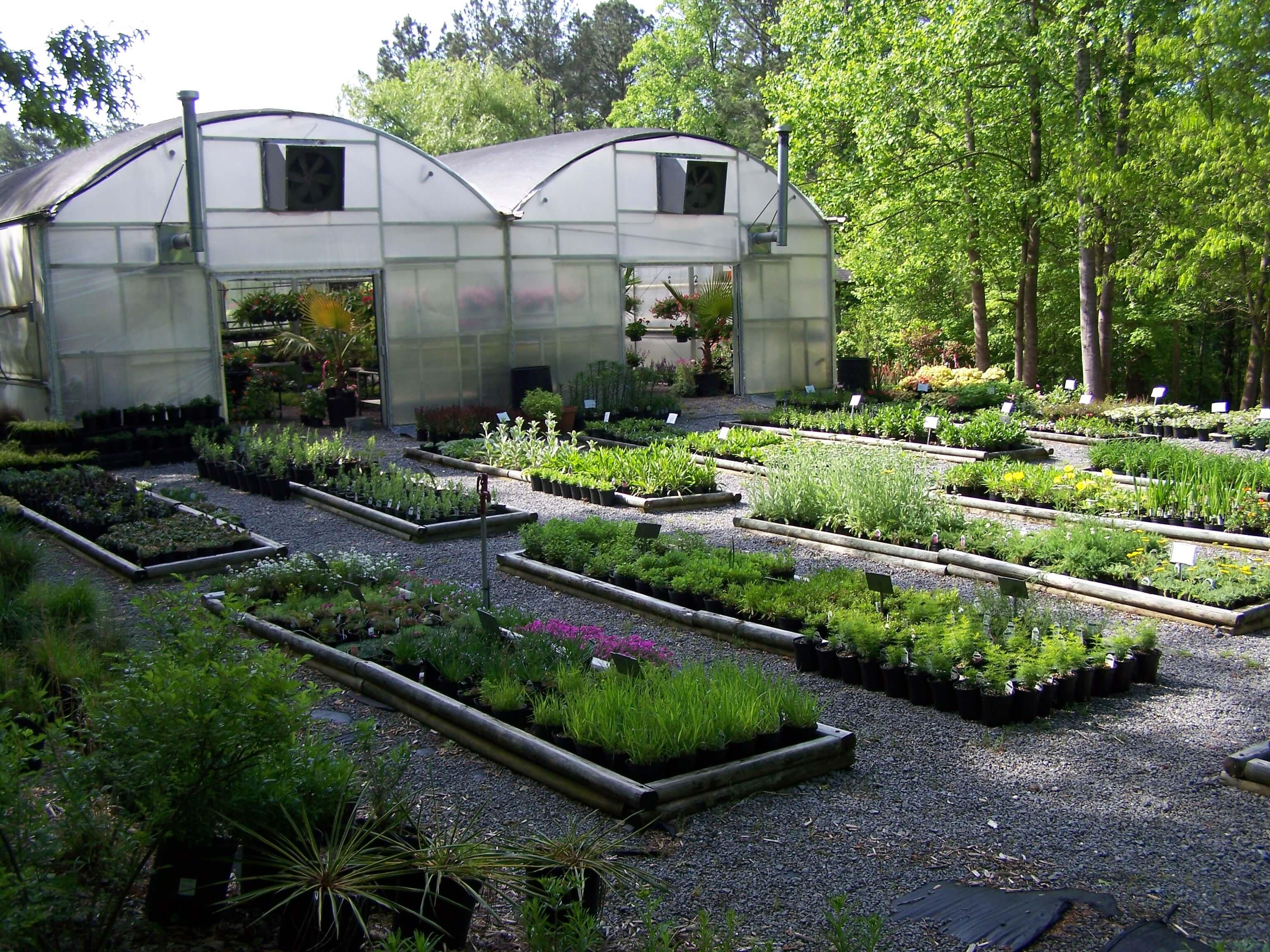Jasper GA Plant Nursery Woodland Gardens Canton