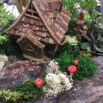 fairy garden at whispering springs
