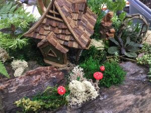 fairy garden at whispering springs