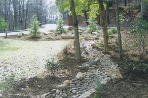 Natural stone rain drainage bed curving through trees and plantings