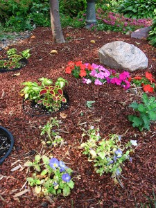 mulch groundcover