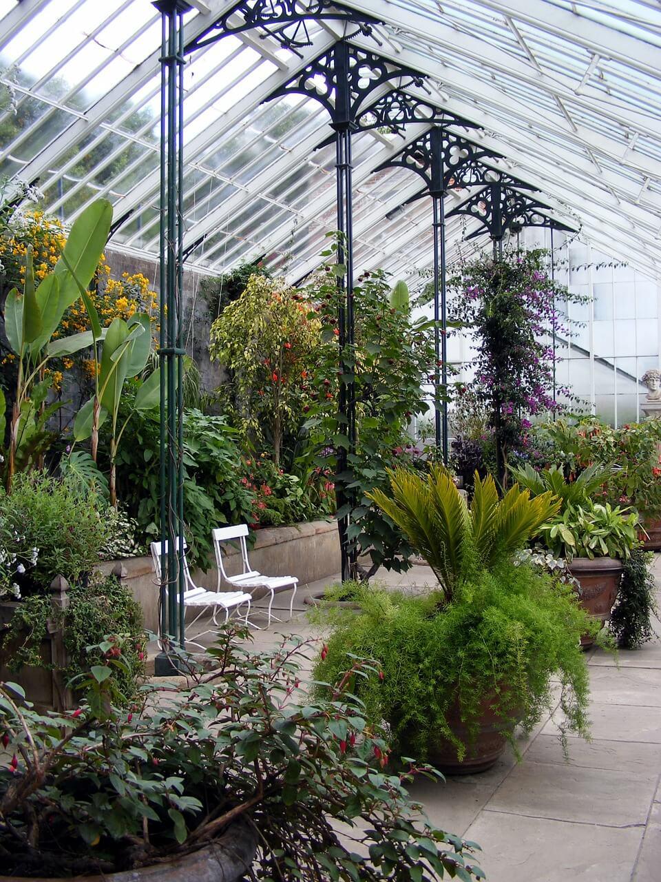 Remarkable Greenhouse Growing In Ga Download Free Architecture Designs Ogrambritishbridgeorg